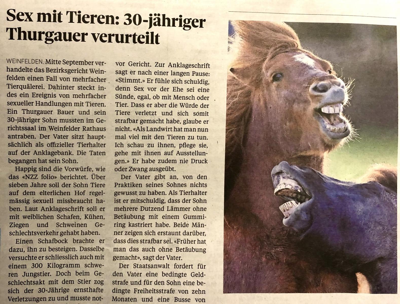 Da lachen ja die Hüh.. - äh, Pferde. - Dank an Daniel Grieser