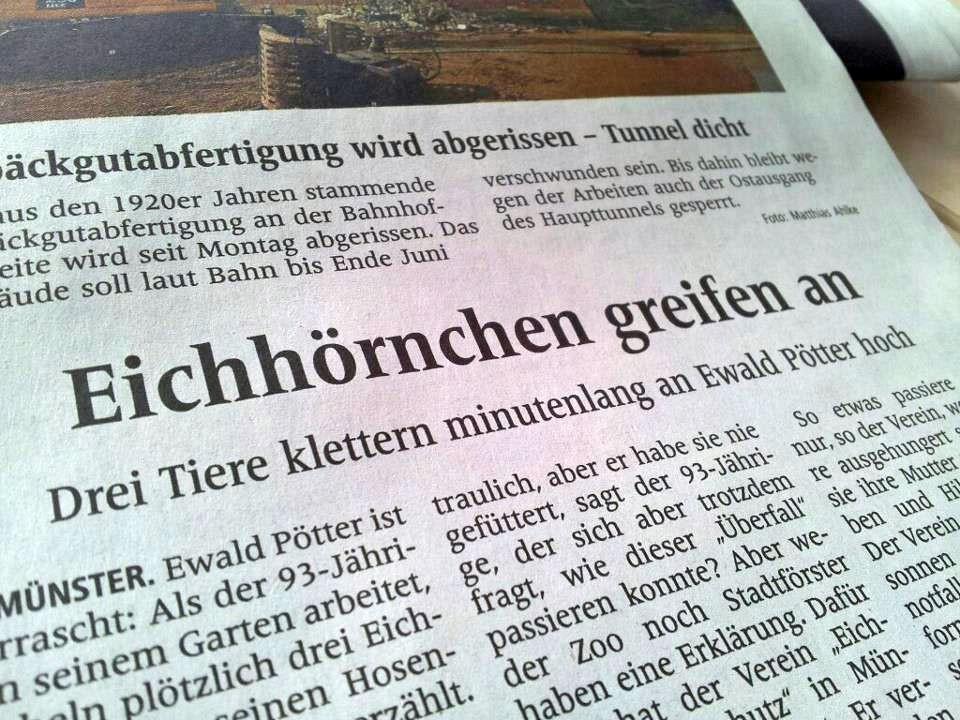 Begegnung der dritten Art in Münster.